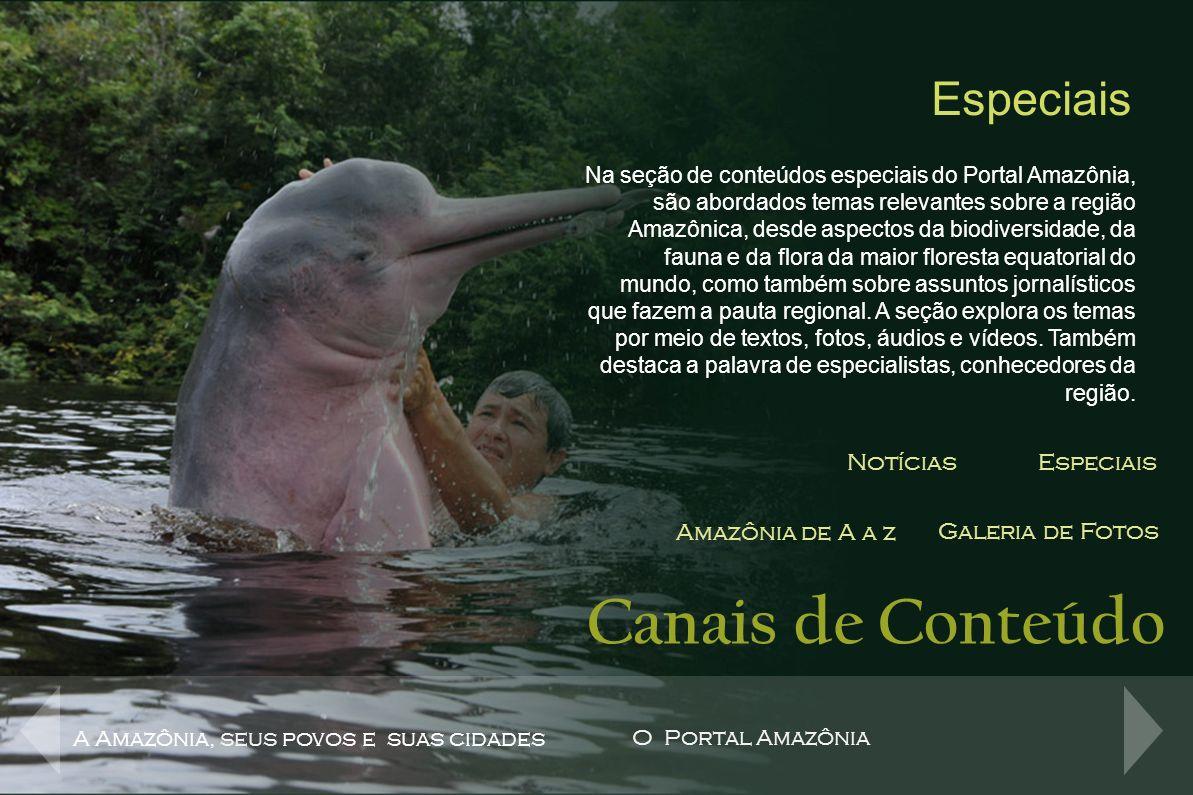 Canais de Conteúdo Especiais Notícias Especiais Amazônia de A a z