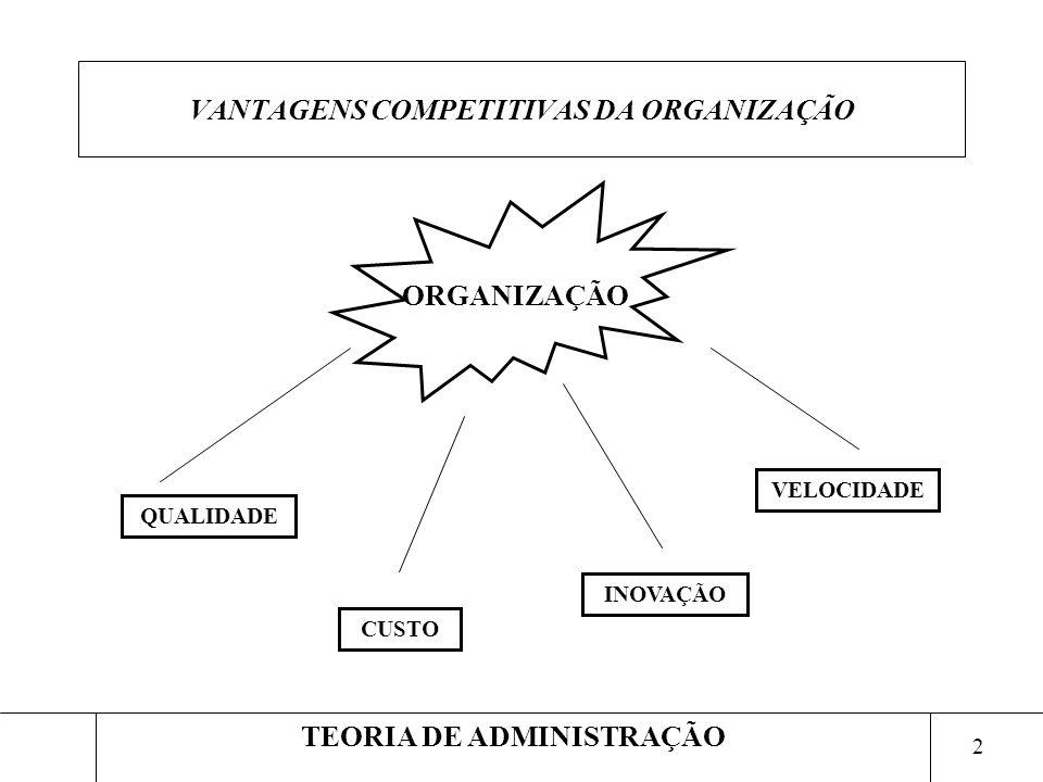 VANTAGENS COMPETITIVAS DA ORGANIZAÇÃO