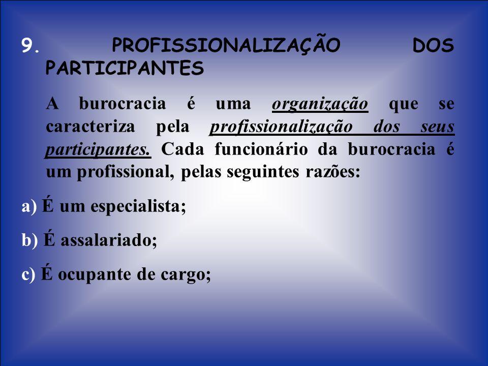 9. PROFISSIONALIZAÇÃO DOS PARTICIPANTES