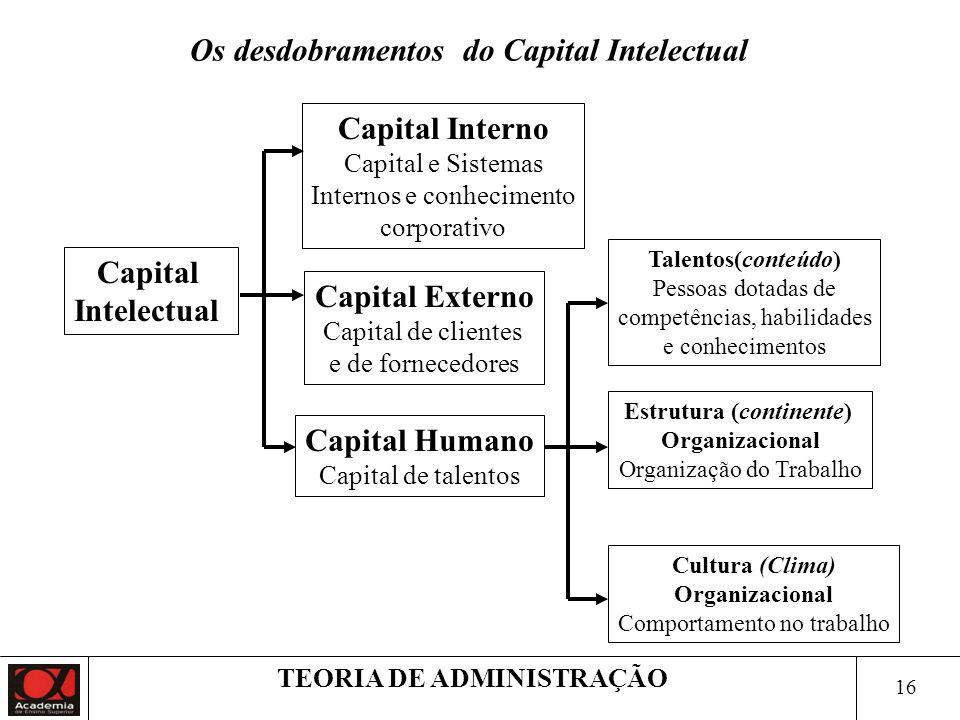 Os desdobramentos do Capital Intelectual