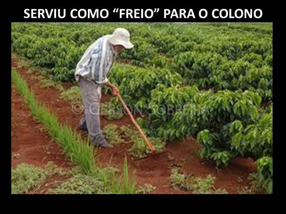 SERVIU COMO FREIO PARA O COLONO