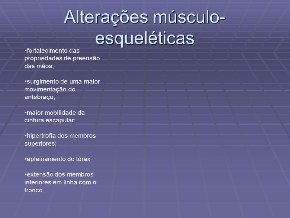 Alterações músculo-esqueléticas