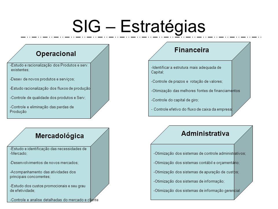 SIG – Estratégias Financeira Operacional Administrativa Mercadológica