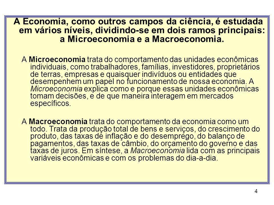A Economia, como outros campos da ciência, é estudada em vários níveis, dividindo-se em dois ramos principais: a Microeconomia e a Macroeconomia.