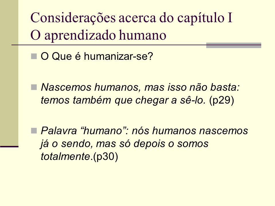 Considerações acerca do capítulo I O aprendizado humano