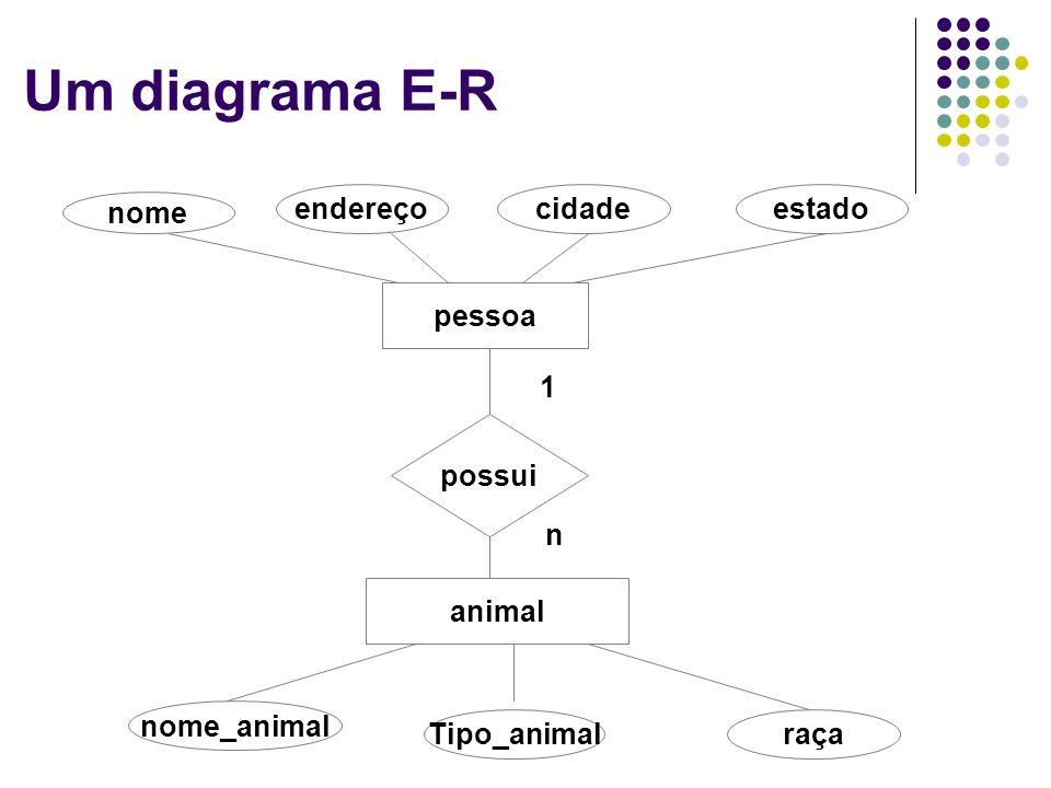 Um diagrama E-R nome endereço cidade estado pessoa possui animal