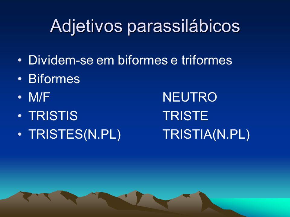 Adjetivos parassilábicos
