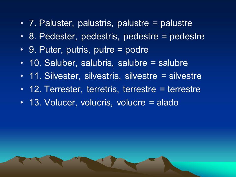 7. Paluster, palustris, palustre = palustre