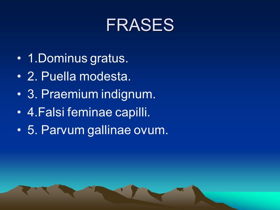 FRASES 1.Dominus gratus. 2. Puella modesta. 3. Praemium indignum.