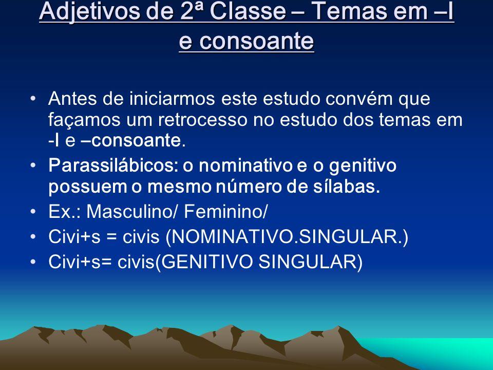 Adjetivos de 2ª Classe – Temas em –I e consoante