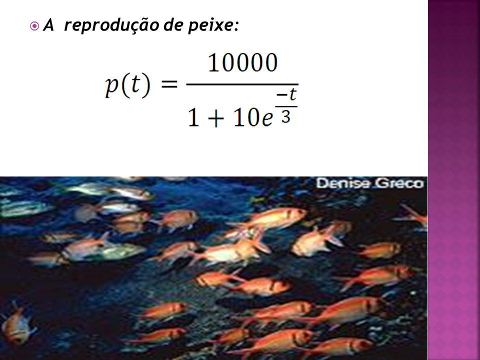 A reprodução de peixe: