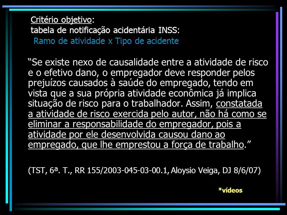 (TST, 6ª. T., RR 155/2003-045-03-00.1, Aloysio Veiga, DJ 8/6/07)