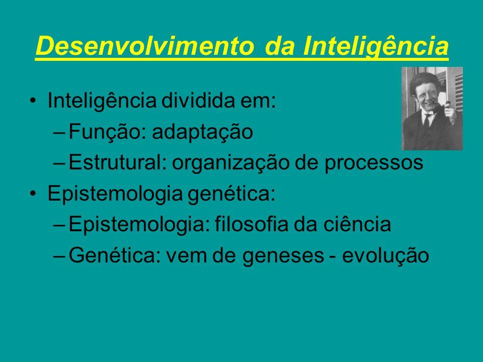 Desenvolvimento da Inteligência