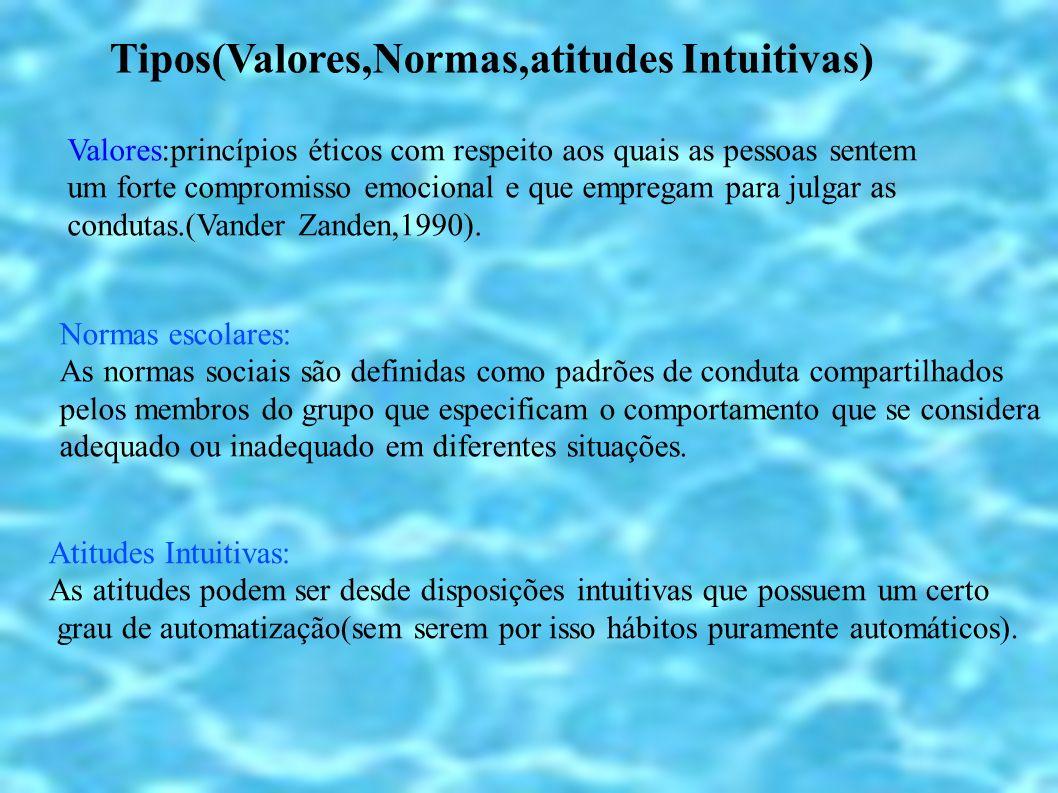 Tipos(Valores,Normas,atitudes Intuitivas)