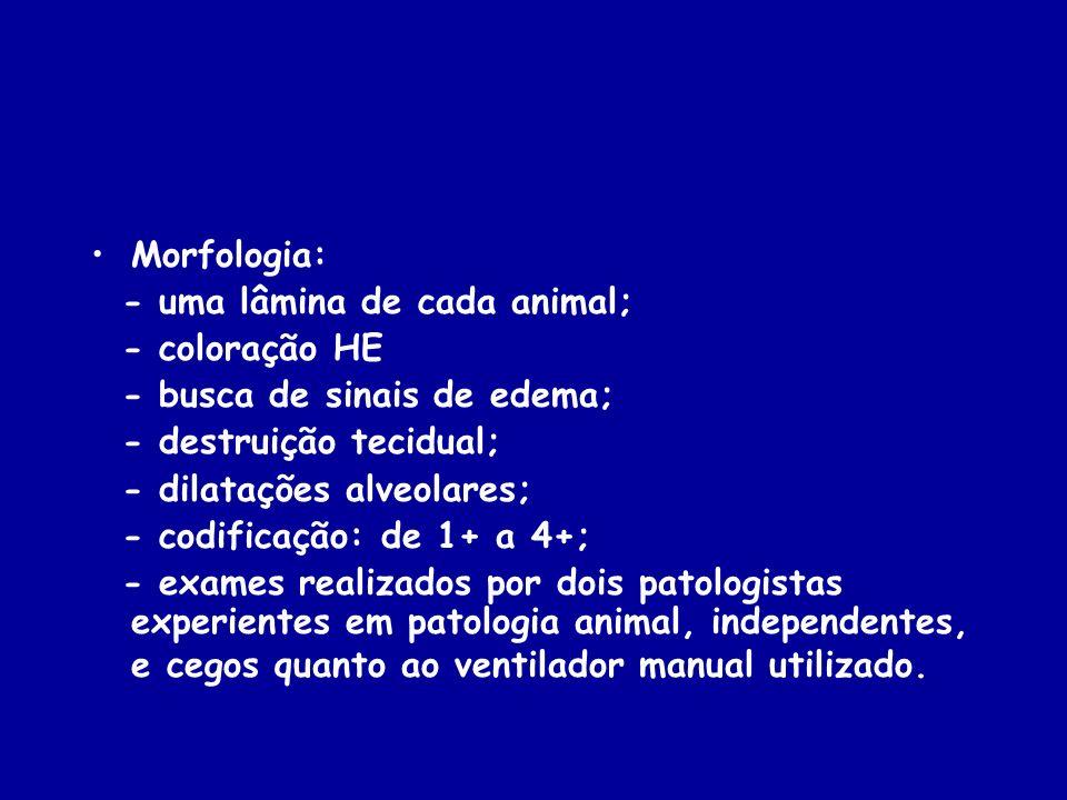 Morfologia: - uma lâmina de cada animal; - coloração HE. - busca de sinais de edema; - destruição tecidual;
