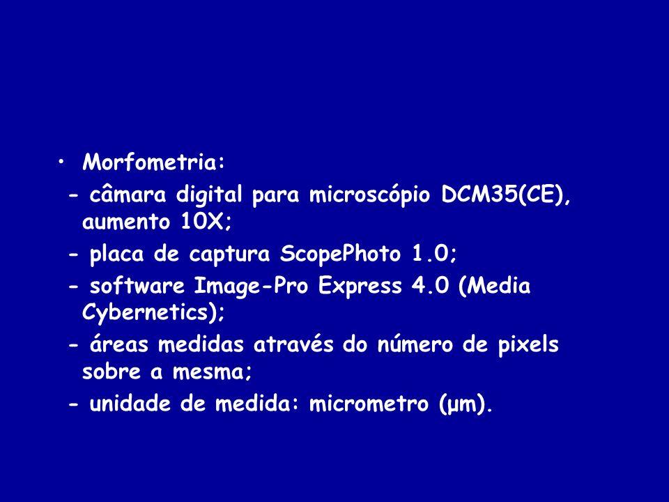 Morfometria: - câmara digital para microscópio DCM35(CE), aumento 10X; - placa de captura ScopePhoto 1.0;