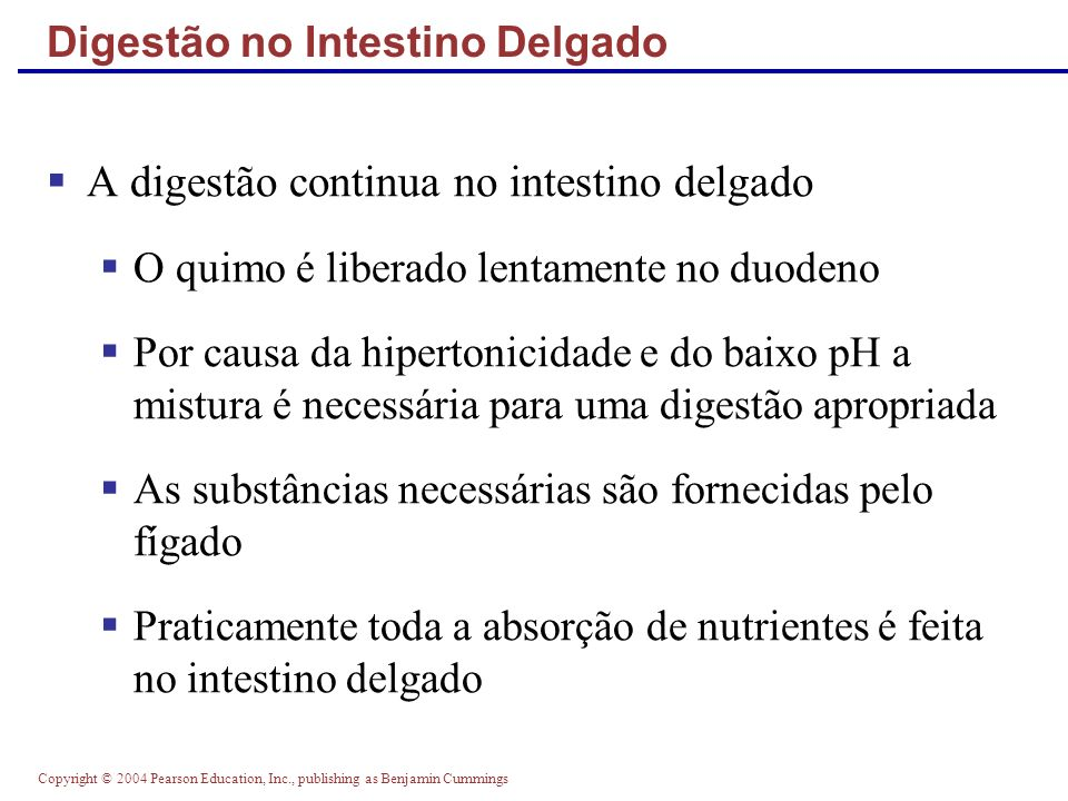 Digestão no Intestino Delgado