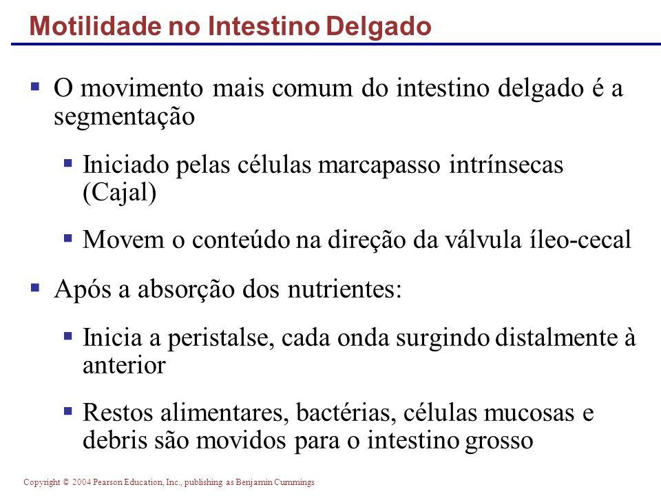 Motilidade no Intestino Delgado