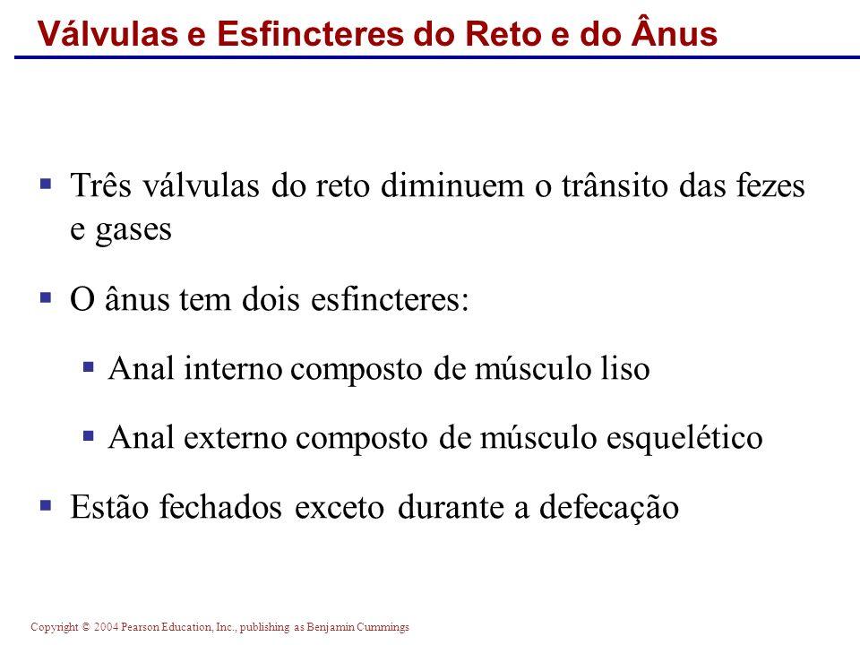 Válvulas e Esfincteres do Reto e do Ânus