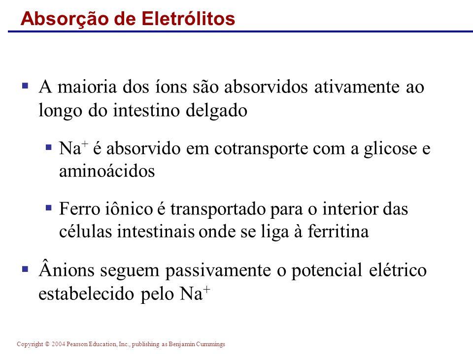 Absorção de Eletrólitos