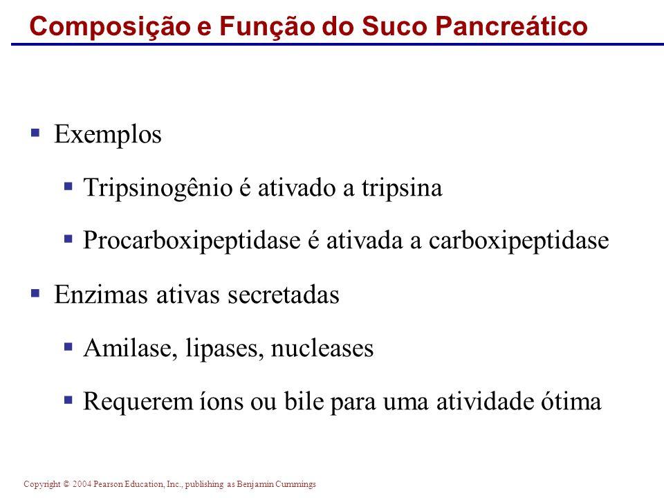 Composição e Função do Suco Pancreático