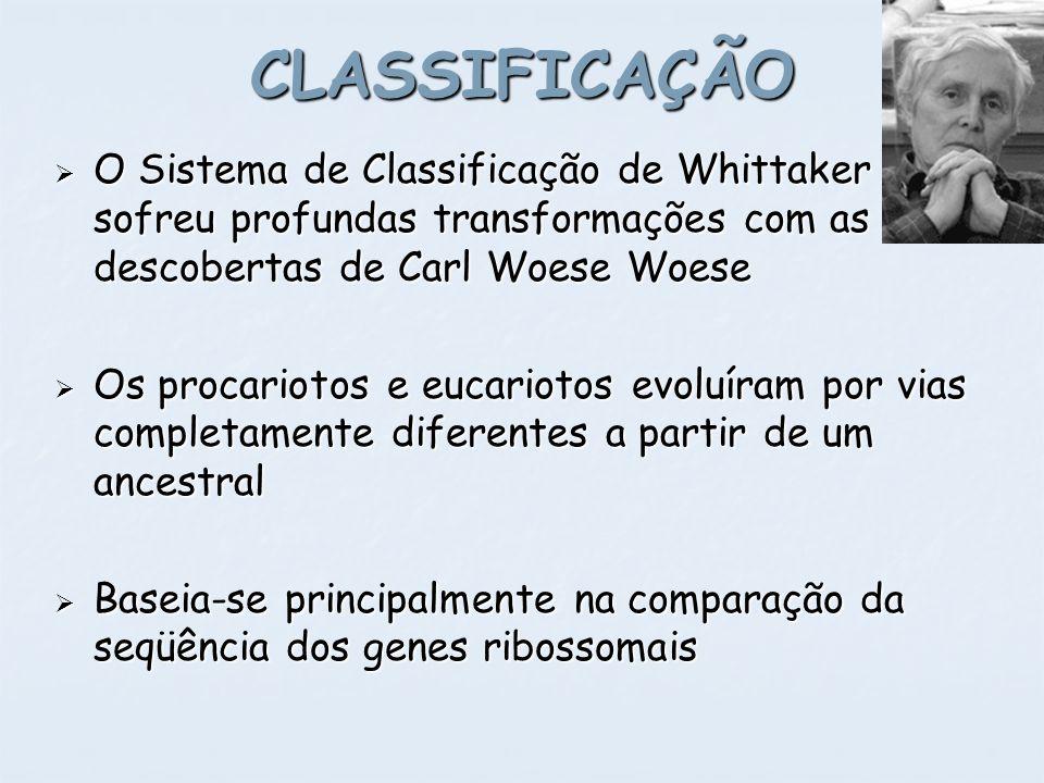 CLASSIFICAÇÃO O Sistema de Classificação de Whittaker sofreu profundas transformações com as descobertas de Carl Woese Woese.