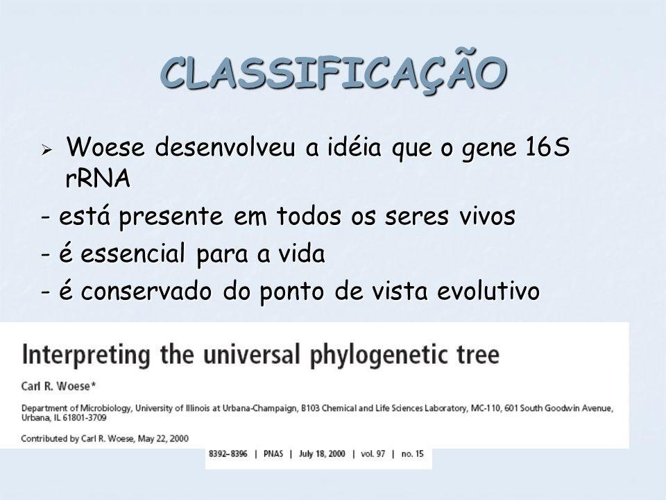 CLASSIFICAÇÃO Woese desenvolveu a idéia que o gene 16S rRNA