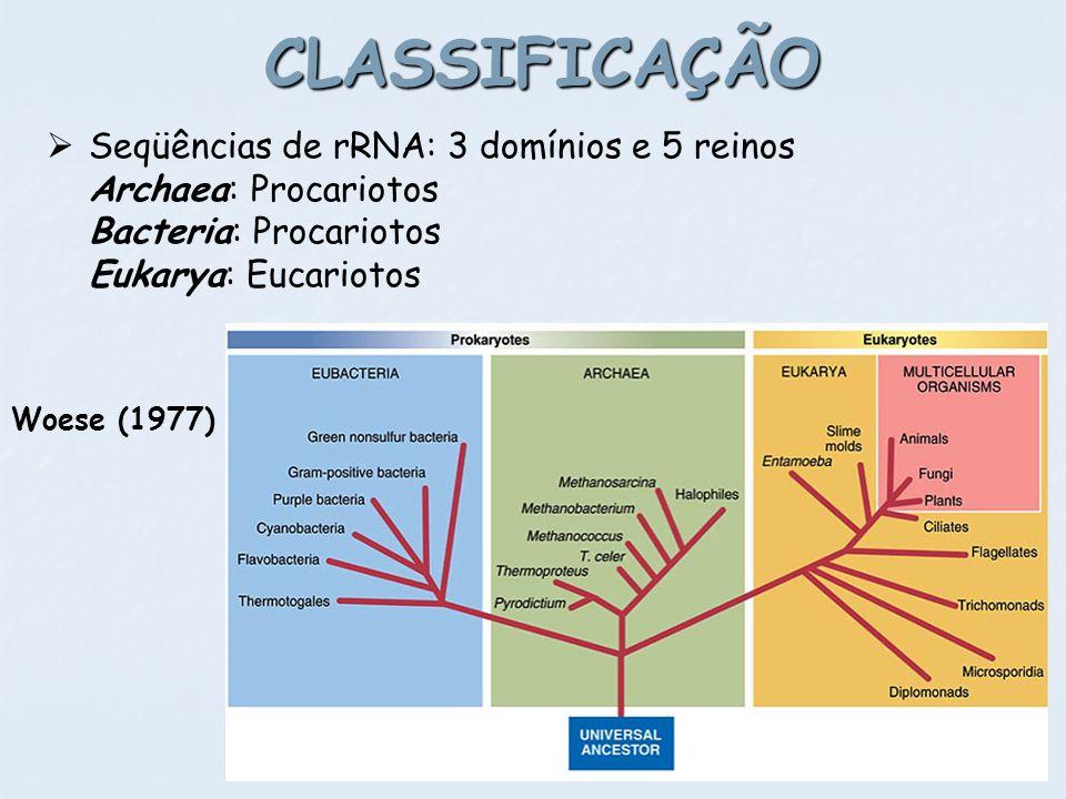 CLASSIFICAÇÃO Seqüências de rRNA: 3 domínios e 5 reinos Archaea: Procariotos Bacteria: Procariotos Eukarya: Eucariotos.