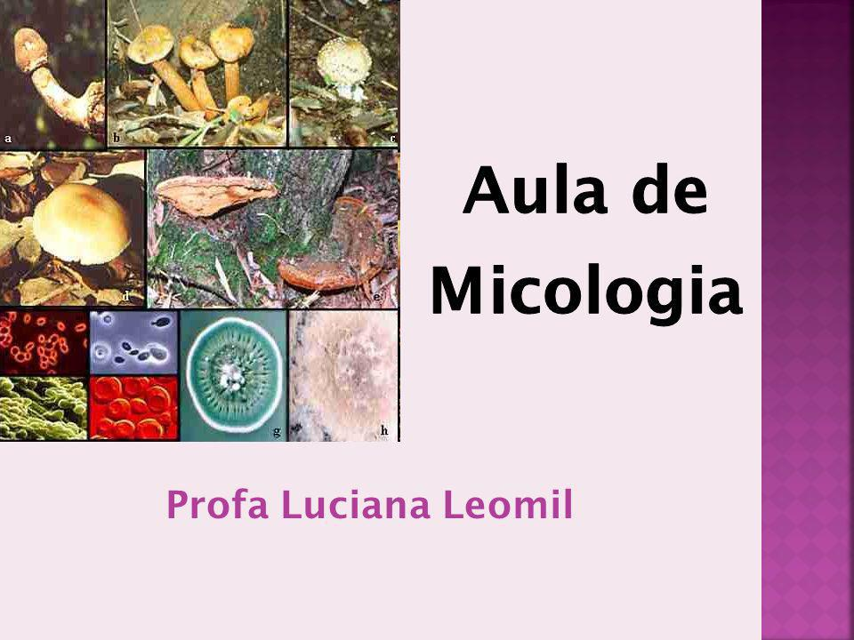 Aula de Micologia Profa Luciana Leomil