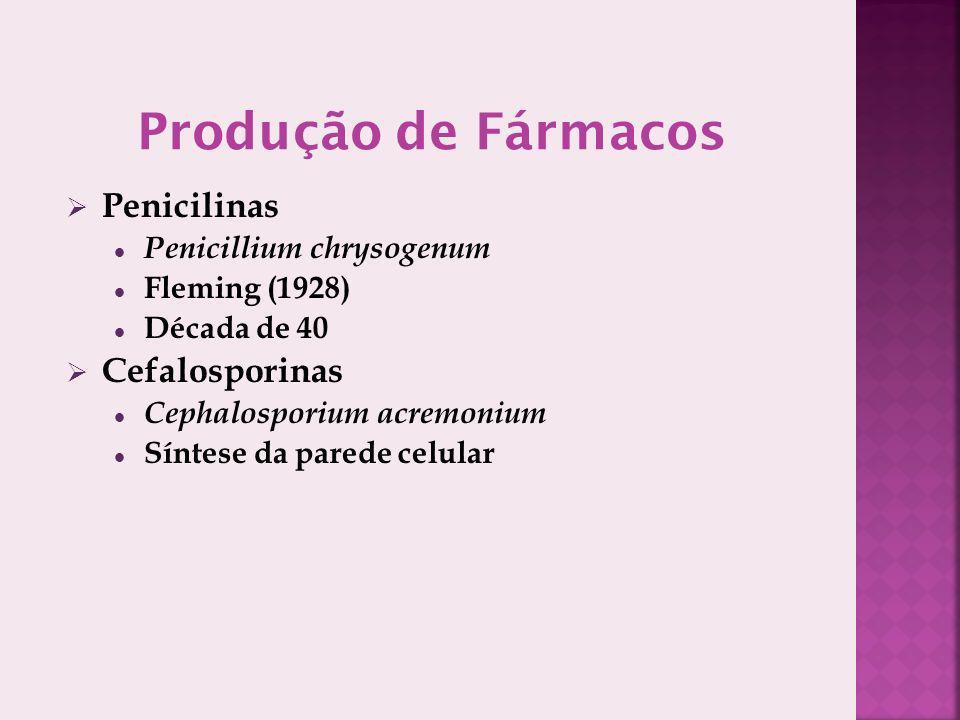 Produção de Fármacos Penicilinas Cefalosporinas