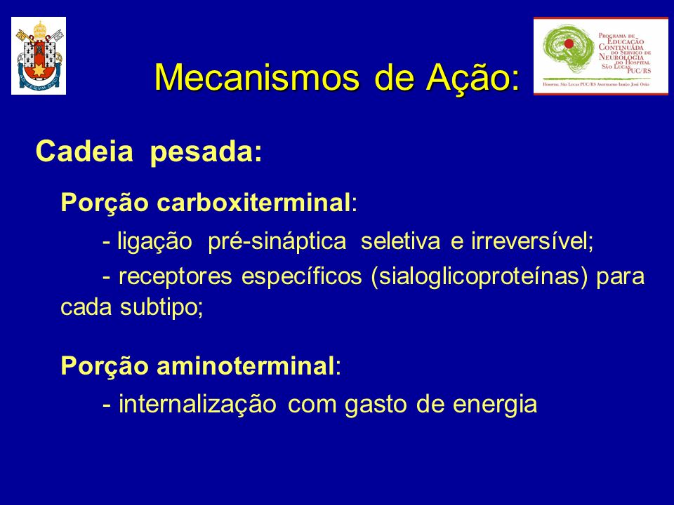 Mecanismos de Ação: Cadeia pesada: Porção carboxiterminal: