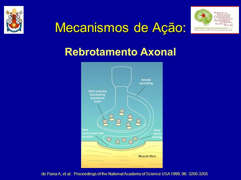 Mecanismos de Ação: Rebrotamento Axonal