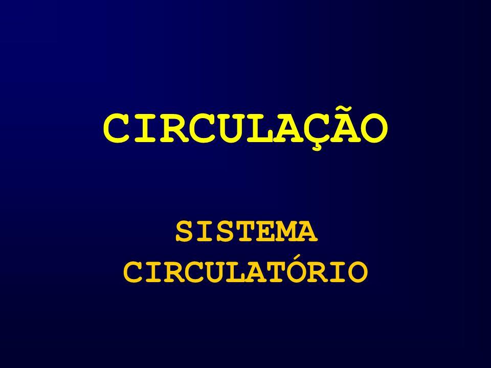 CIRCULAÇÃO SISTEMA CIRCULATÓRIO