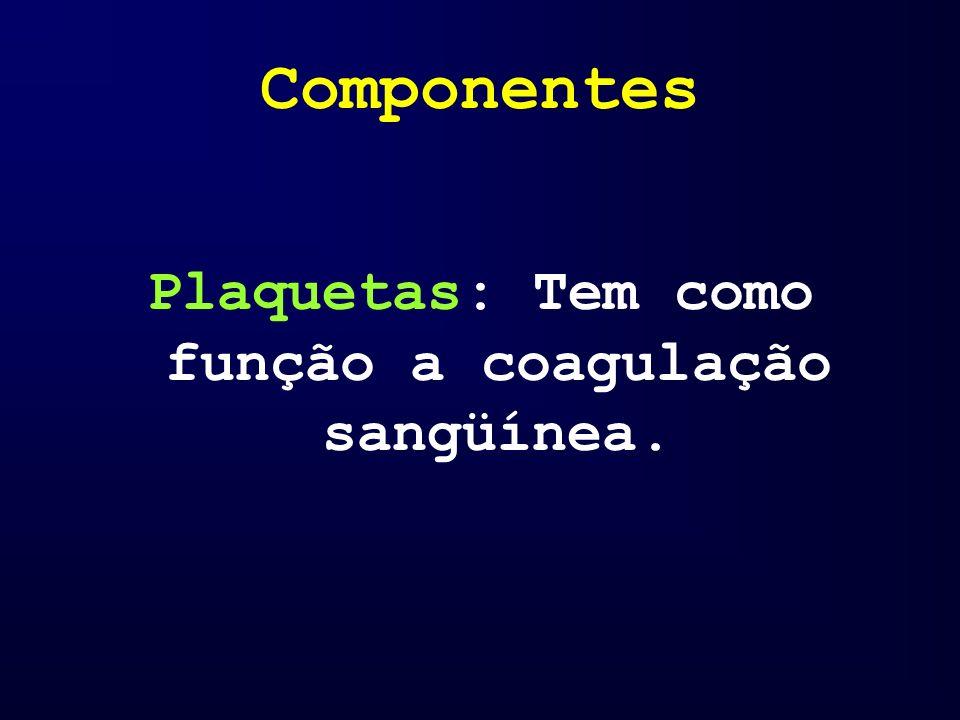 Plaquetas: Tem como função a coagulação sangüínea.