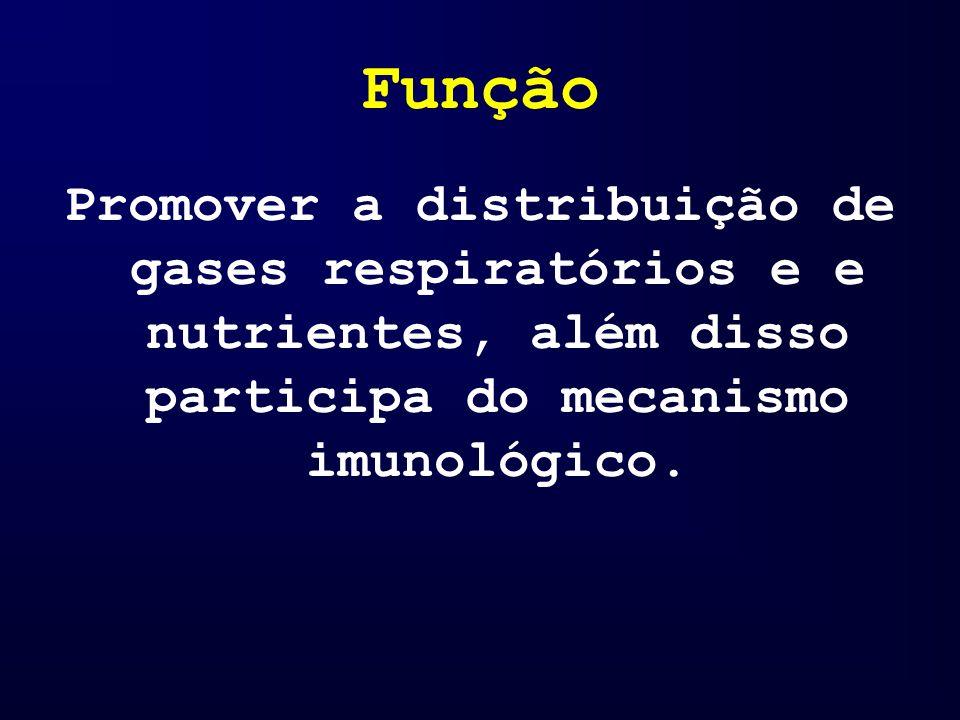 Função Promover a distribuição de gases respiratórios e e nutrientes, além disso participa do mecanismo imunológico.