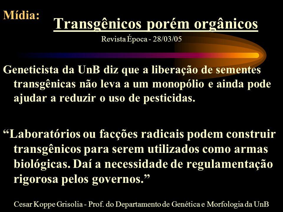 Transgênicos porém orgânicos
