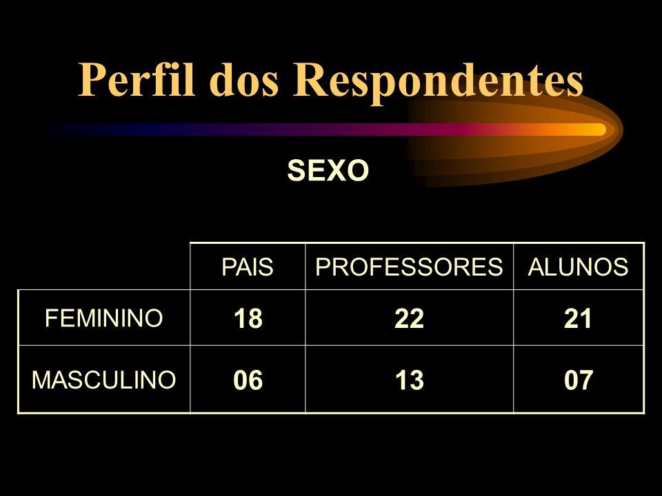 Perfil dos Respondentes