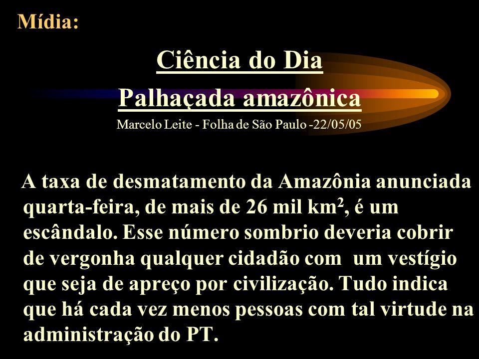 Marcelo Leite - Folha de São Paulo -22/05/05