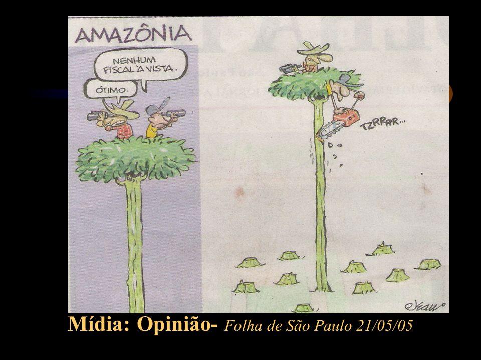 Mídia: Opinião- Folha de São Paulo 21/05/05