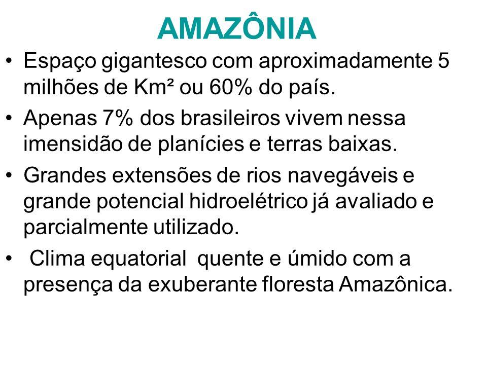 AMAZÔNIA Espaço gigantesco com aproximadamente 5 milhões de Km² ou 60% do país.