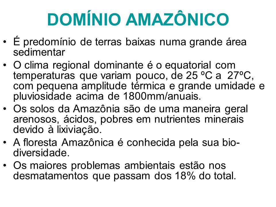 DOMÍNIO AMAZÔNICO É predomínio de terras baixas numa grande área sedimentar.