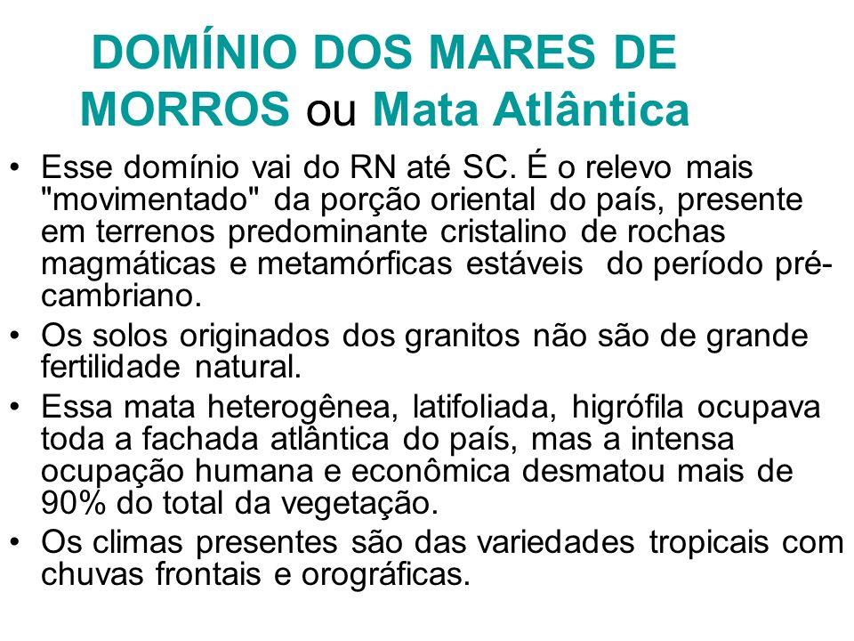 DOMÍNIO DOS MARES DE MORROS ou Mata Atlântica