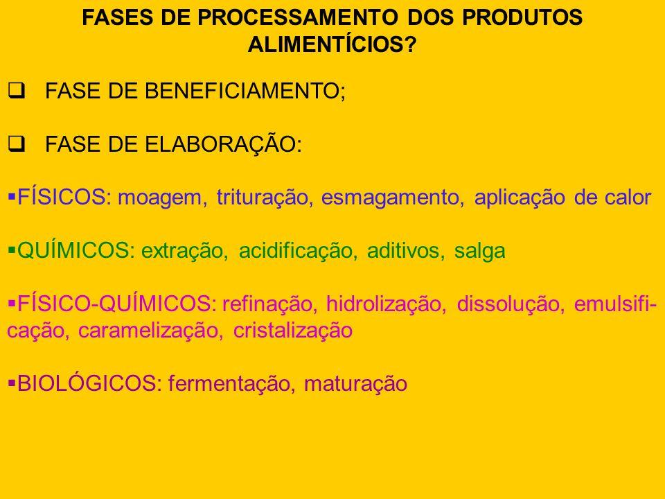 FASES DE PROCESSAMENTO DOS PRODUTOS ALIMENTÍCIOS