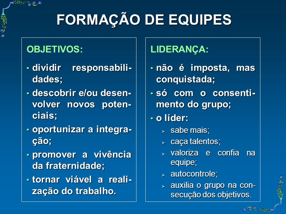 FORMAÇÃO DE EQUIPES OBJETIVOS: LIDERANÇA: dividir responsabili-dades;