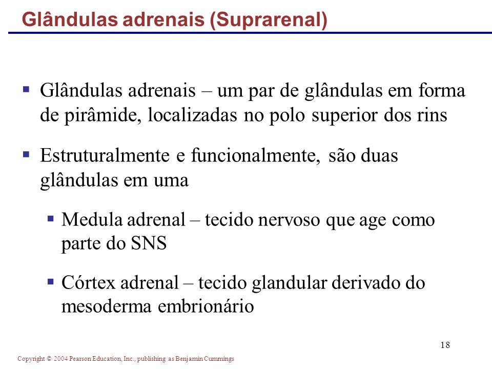Glândulas adrenais (Suprarenal)
