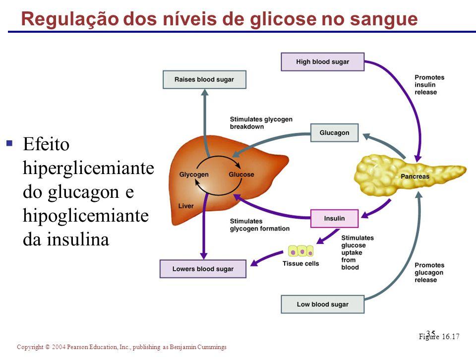Regulação dos níveis de glicose no sangue