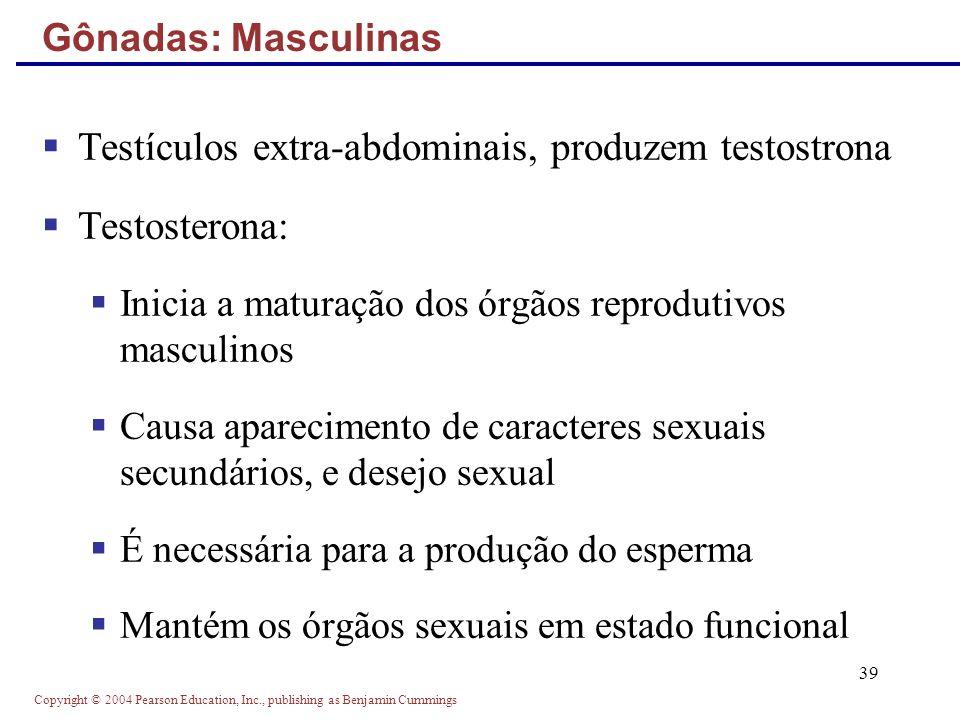 Testículos extra-abdominais, produzem testostrona Testosterona: