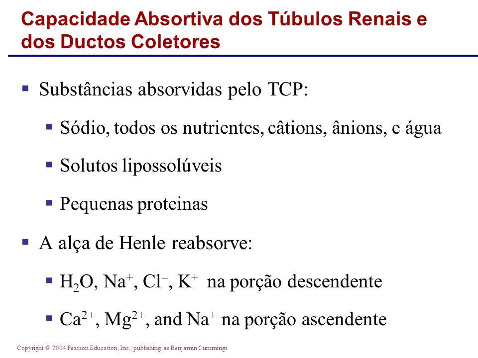 Capacidade Absortiva dos Túbulos Renais e dos Ductos Coletores