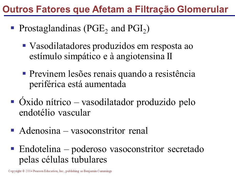 Outros Fatores que Afetam a Filtração Glomerular
