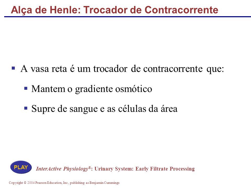 Alça de Henle: Trocador de Contracorrente